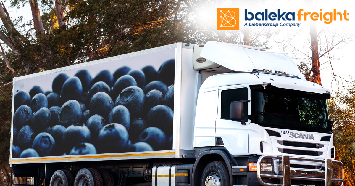 Read more about the article Refrigerated Transport for the Blueberry Season